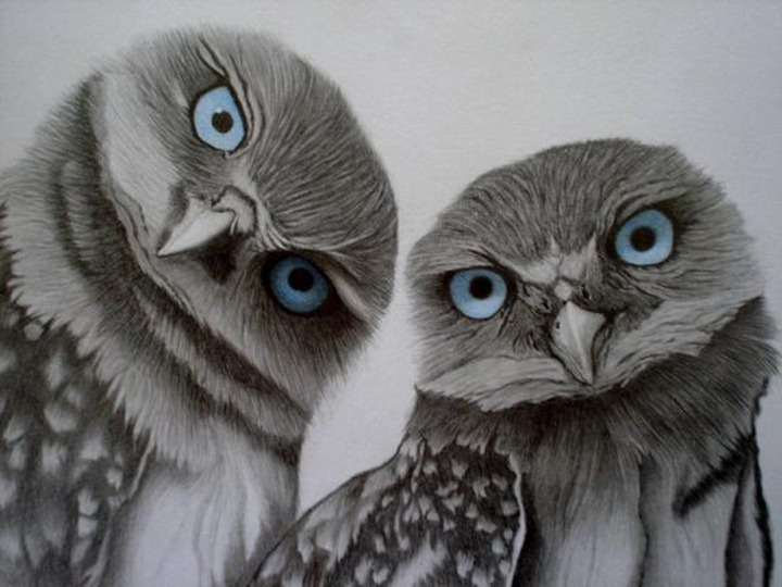 Иллюстрации бразильского художника Sinsenor
