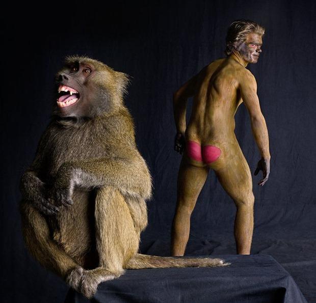 """""""Люди, как животные"""" серия работ от Lennette Newell"""
