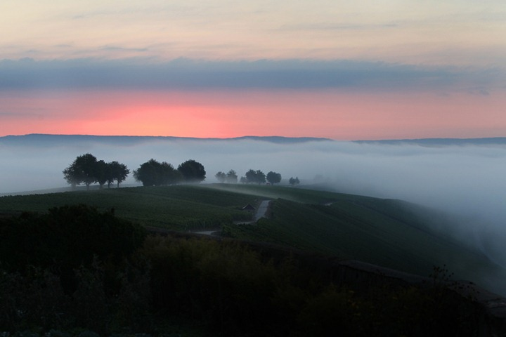 Лучшие фотографии природы 2012