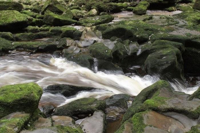 Самая опасная река в мире река Уорф