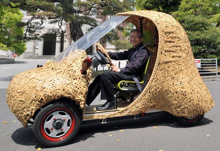 Бамбуковый транспорт