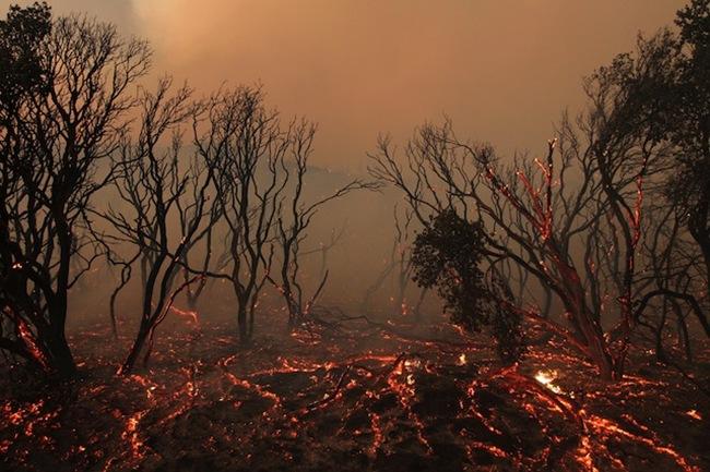 Внушающая страх красота калифорнийского пожара