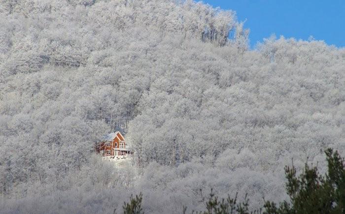 Далеко от суеты: дом мечты (10 фото)