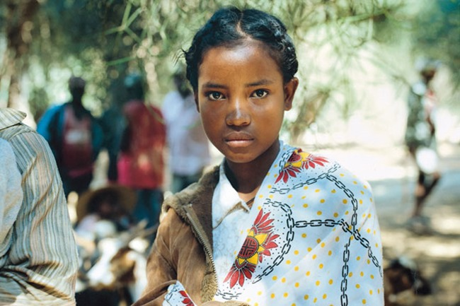 Мадагаскар: мир живой природы