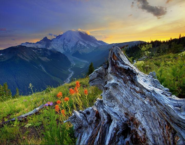 Красота окружающего мира глазами Kevin McNeal