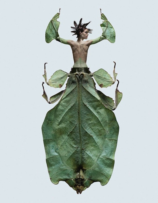 Женщины–насекомые