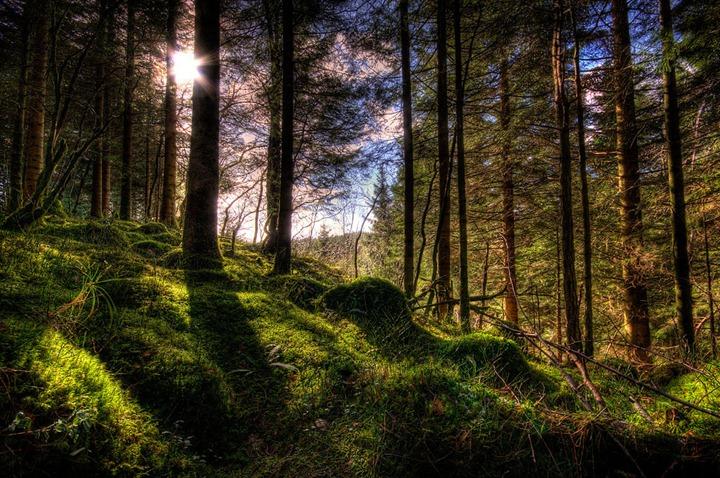 HDR – фотографии от Amund Nedland