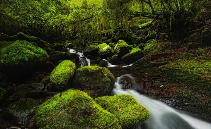 Восхитительные фотографии природы Drew Hopper