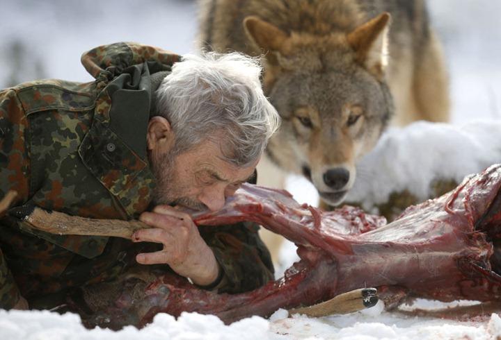 Человек волк википедия - 6554
