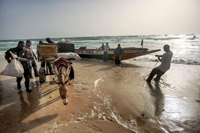 Мавритания, одно из тех удивительных мест, которое вы вряд ли посетите