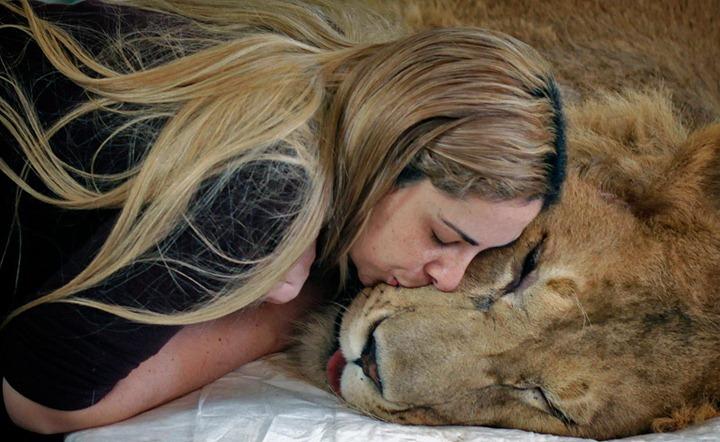 Слиться в поцелуи…