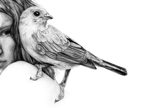 Рисунки карандашом Amy Dover