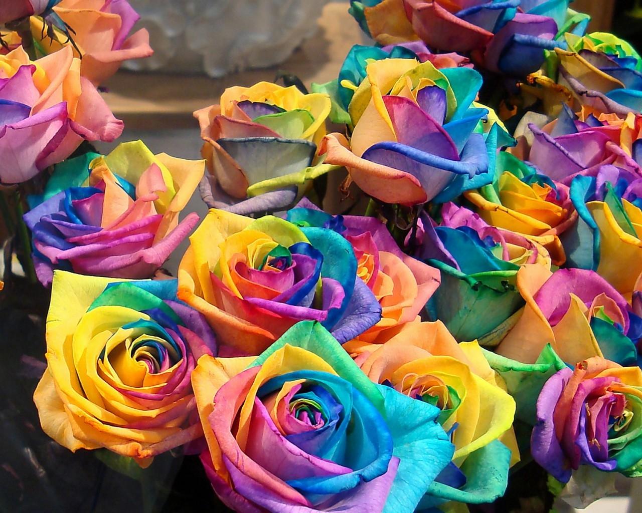 a528b226f39a О самых дорогих и интересных цветах! — фото и картинки на DayEvents